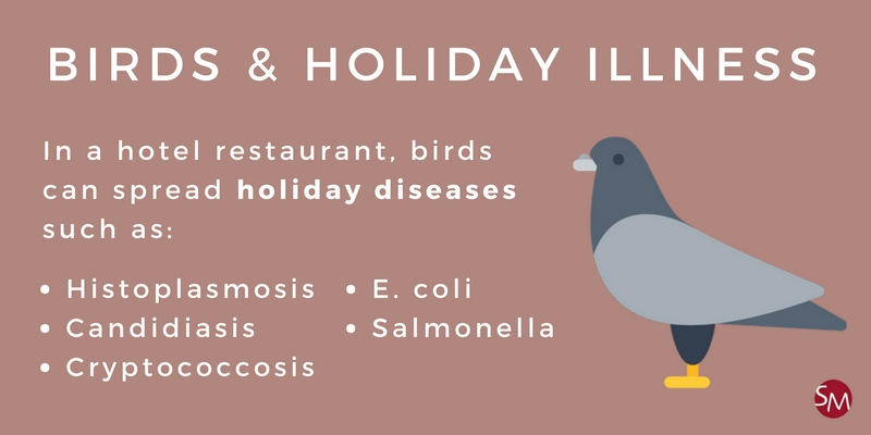 Brids and holiday illness