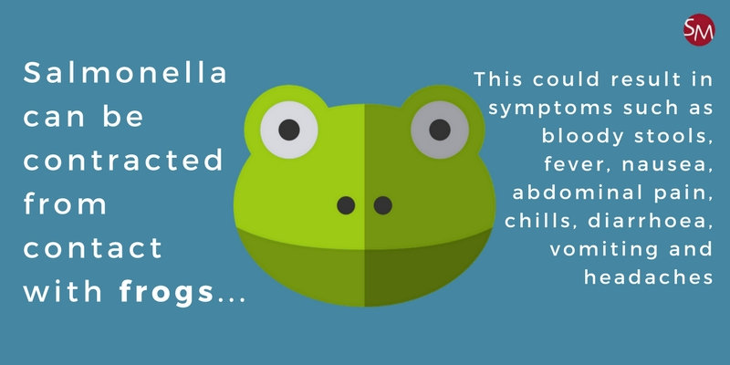 The risk of contracting Salmonella from frogs on holiday